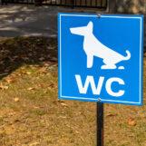 deurne-leeft-hondentoilet-prosper-de-wit-straat