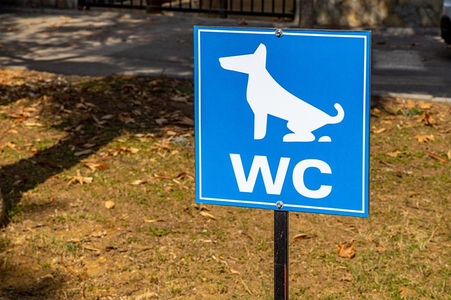 deurne leeft hondentoilet prosper de wit straat