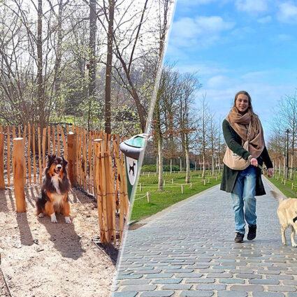 deurne leeft hondentoilet rivierenhof