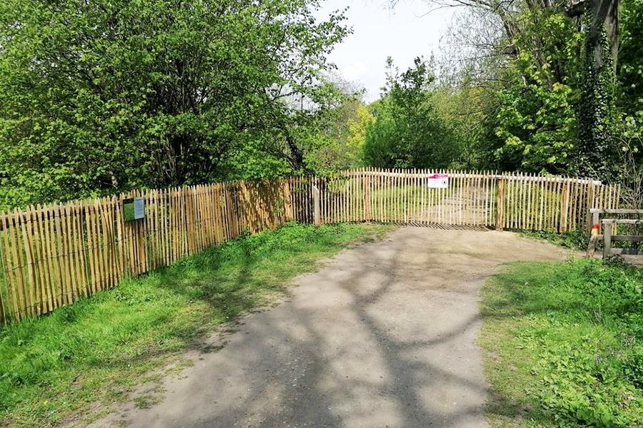 deurne-leeft-dotterbloemgrasland--rivierenhof-herstel
