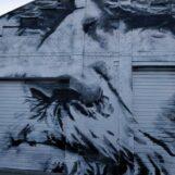 Deurne leeft zijkant fietstocht voor vrouwen murals tekeningen bisschoppenhofpark